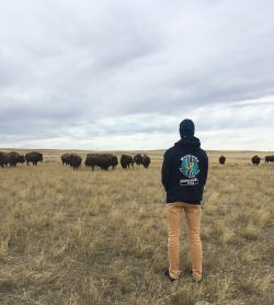 Standing in fromt of Bison