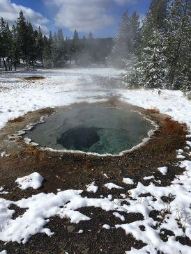 Yellowstone National Park, Wyoming 5