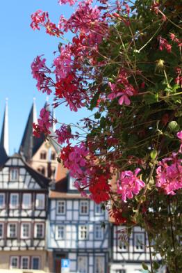 Exploring Germany