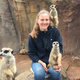 Visiting the meerkats at Australia Zoo