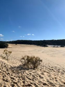 Fraser Island_2