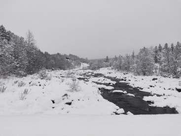 Snow in Geilo